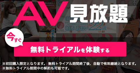 AV見放題の入口